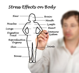 Fear, panic and the effects of stress on the body